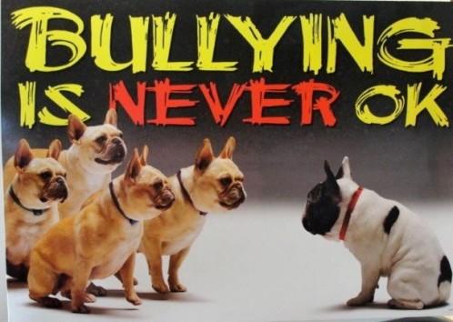 Bullies 4